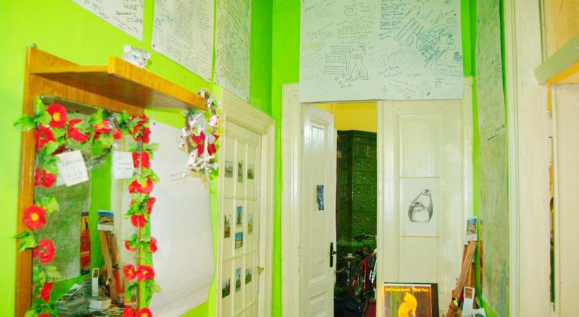 cats house hostel 1Хостел Кошкин дом